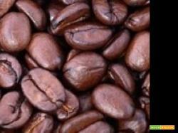 TORTA AL CAFFE'