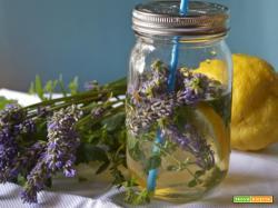 Acqua aromatizzata lavanda, menta e cedro: il toccasana dell'estate