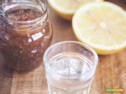 Marmellata di limoni e vodka: un tocco di raffinatezza per la vostra tavola