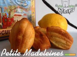 Petite Madeleines