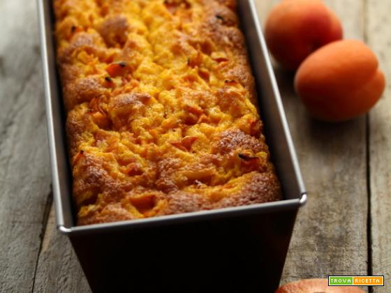 Cake carote e albicocche