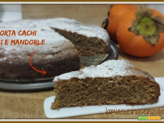 Torta cachi, noci e mandorle senza lattosio senza uova