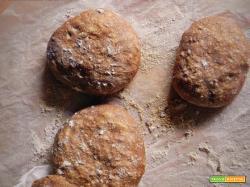Panini con farina di semi