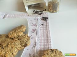 Biscotti dei 3 senza (uova, latticini, glutine)