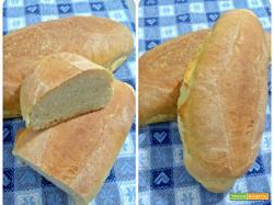 Pane alla farina di grano duro, soia e orzo