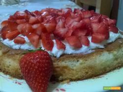 Cheesecake soffice con fragole