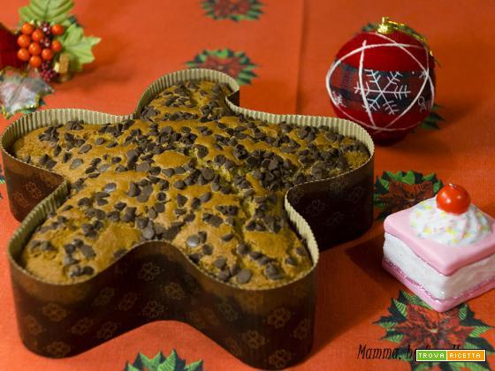 Torta di arance e gocce di cioccolato – ricetta veloce