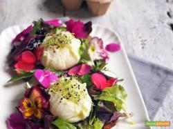 Essenza: Bruschette con insalata fiorita e uova pochè