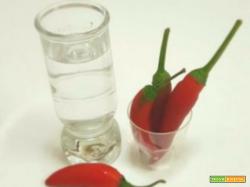 Liquore al peperoncino: come prepararlo