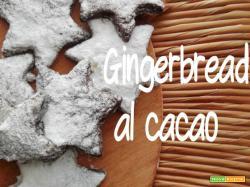 Gingerbread al cacao e 'na strofinatina di zenzero