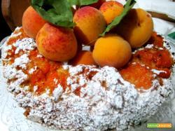 Torta ciambella di albicocche