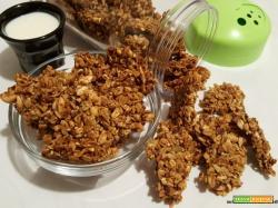 Granola alla frutta secca e sciroppo d'acero