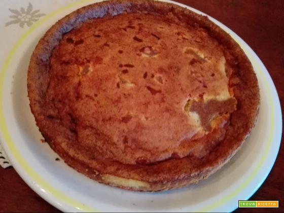 Cheesecake bicolore
