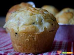 Muffin salati con funghi salame e scamorza
