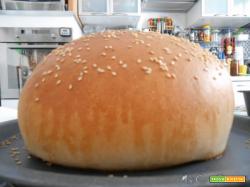 Impasto base per pane e pizza col Cuisine Companion (Video)