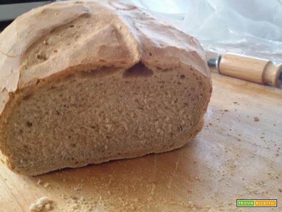 Pane di farro integrale