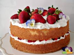 Angel food cake con panna e fragole