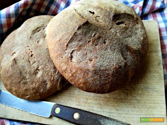 Pane di farina 1 con lievito madre