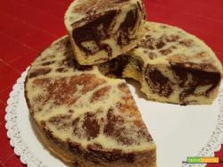 Chiffon cake bicolore
