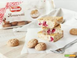 Insolita Cheesecake (light) con Ricotta, Lamponi e Amaretti