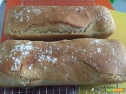 Pane senza lievito, tramite autolisi della farina, fatto con il Cuisine e i-Companion Moulinex