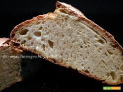 Pane di grano duro senza impasto con cottura frigo-forno, ovvero L'ultimo pane di Orlando