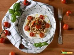 Orecchiette Integrali con Pomodoro e Mozzarella