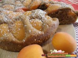 Torta albicocche e cacao