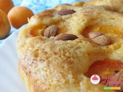 Torta di albicocche senza lattosio con bimby