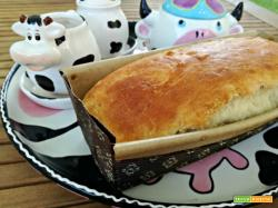 Pan brioche alla vaniglia (con lievito madre)