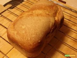 Pane di semola di grano duro nella macchina del pane