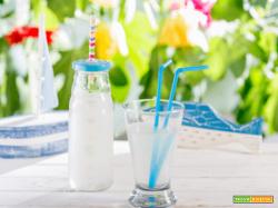 Succo al guanabana: rigenerante e ricca di sostanze benefiche per il corpo!