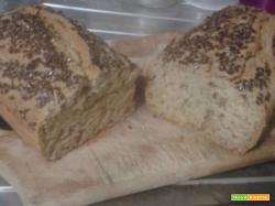 Pane fatto in casa in 5 minuti