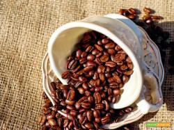 Risotto al caffè