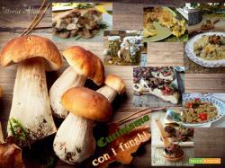 Cuciniamo con i funghi..raccolta