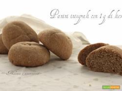 Panini integrale con 1 g di lievito