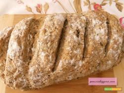 Pane veloce con kefir  e semi di lino