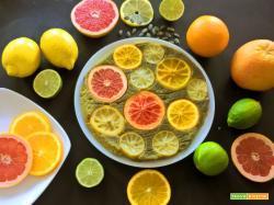 Vegan Torta con Agrumi e farina di semi di Zucca