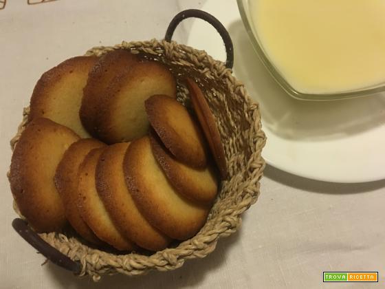 Biscotti del topino Groviera, li inzuppa nella crema degli Aristogatti