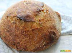 No-knead bread/pane senza impasto