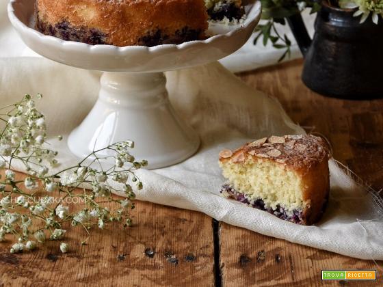 Torta Cocco e Mirtilli