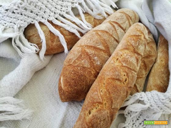 Filoncini di grano Khorasan (marchio Kamut)