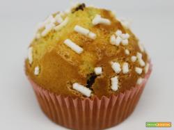 Muffin con gocce di cioccolato | Ricetta