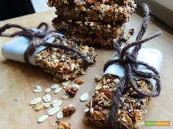 Granola Bars – Barrette di granola – senza lattosio