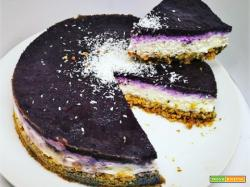 COCONUT, LIME & BLUEBERRIES CHEESCAKE