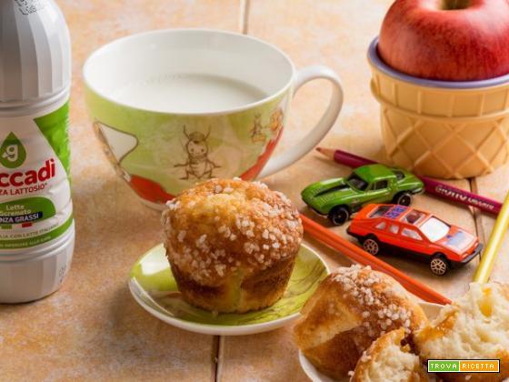 Muffin con farina di teff: un dolce leggero e sfizioso