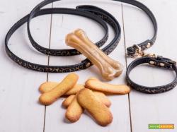 Biscotti per cani senza glutine e lattosio: un dolcetto anche per loro!