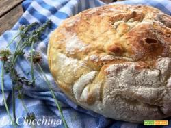 Pane senza impasto o no knead bread (di Jim Lahey)