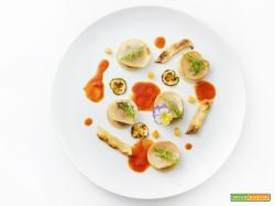 fazzoletti al vento – ravioli aperti con verdure grigliate e salsa di pomodoro estiva