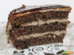 Pan di Spagna al cioccolato, una variante alla classica ricetta
